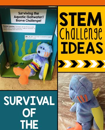 Biome STEM Challenge!